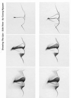 Delineate Your Lips - Lip step by step/how to. - How to draw lips correctly? The first thing to keep in mind is the shape of your lips: if they are thin or thick and if you have the M (or heart) pronounced or barely suggested. Pencil Art Drawings, Art Drawings Sketches, Realistic Drawings, Eye Drawings, How To Draw Realistic, Pencil Drawings For Beginners, Hipster Drawings, Realistic Rose, Cool Art Drawings
