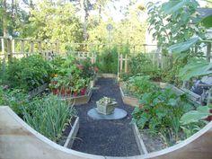 Small vegetable garden design - Debbie's Potager
