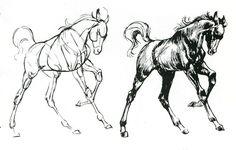 comment dessiner un cheval                                                                                                                                                                                 Plus