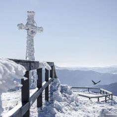 Tarnica najbardziej charakterystyczny szczyt w Bieszczadach