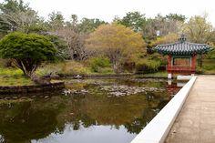Jeju Yeomiji Botanical Gardens #korea