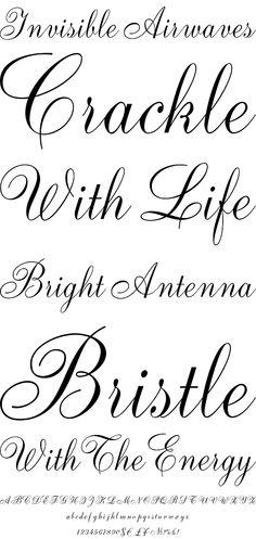 1000 Images About Fonts On Pinterest Script Fonts