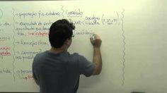 Vinícius Reccanello de Almeida- LDB parte 3 - YouTube