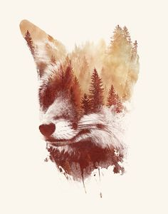 Blind fox || Art Print ||  by Robert Farkas