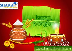 HaPpy Pongal To All May This Festival Brings You Lots of Happiness, Health & Wealth.