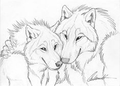 Cuddly Couples - Wolves02 by Goldenwolf.deviantart.com on @deviantART