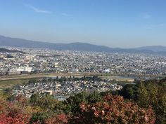 Kyoto city from 🐒 park
