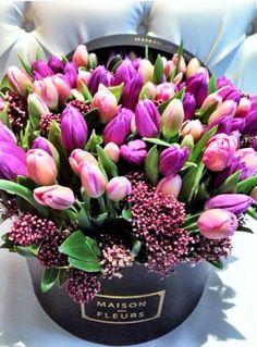 ROMANCE– Flowers (Art Flowers)& Gardens– Сообщество– Google+