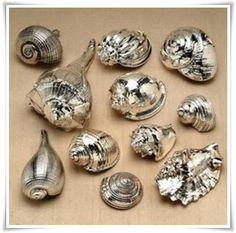 Schelpen met spuitbus zilver bespoten