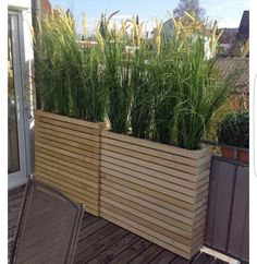 ideas apartment patio garden privacy screens for 2019 Garden Privacy, Porch Privacy, Balcony Privacy Plants, Privacy Wall Outdoor, Balcony Privacy Screen, Balcony Blinds, Privacy Trellis, Bamboo For Privacy, Planting For Privacy