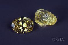 Cut versus Rough: rare fancy-colored Yellow Diamonds