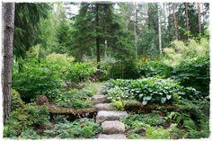 Mökkipuutarhassa Firewood, Stepping Stones, Outdoor Decor, Garden, Plants, Home Decor, Homemade Home Decor, Woodburning, Garten