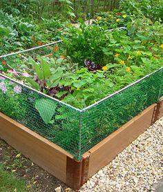 Image detail for Raised Garden Bed Rabbit Fence 4 x 8 x 21 Diy Garden, Lawn And Garden, Garden Projects, Spring Garden, Fence Garden, Yard Fencing, Cedar Garden, Garden Frame, Fence Planters