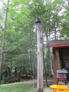 appalachian trail trekking tennessee climbing laundry breakfast wifi meet hiking in pursuit of hammock  camping  hammock  camping shakedown take 1      rh   pinterest