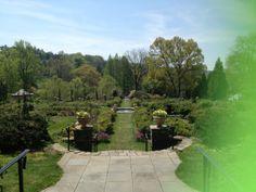 Morris Arboretum in Philadelphia, PA