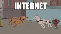 Fighting On The Internet
