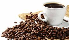 coffee bean - Google Search
