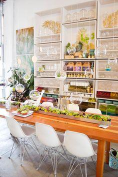 terrarium making station, succulents, pigment shop in san diego, event idea, home goods, store design, decor