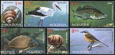 MOLDOVA FLORA | Moldova-2014-Fauna-Birds-Fishes-and-Snails-6v