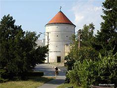Slovakia, Modra - Ignac Bizmayer Gallery Pisa, Tower, Gallery, Building, Travel, Rook, Lathe, Buildings, Viajes