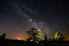 Tree Light by Matt Molloy on Flickr.