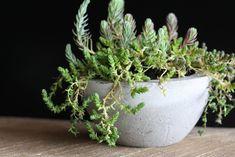 diy concrete pots