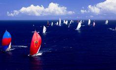 Watch the Thanksgiving Regatta in November, Coral Bay, St. John, US Virgin Islands (Windspree Vacation Homes)