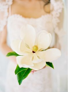 Try this! Using just one flower in your wedding bouquet makes a simple and elegant statement.