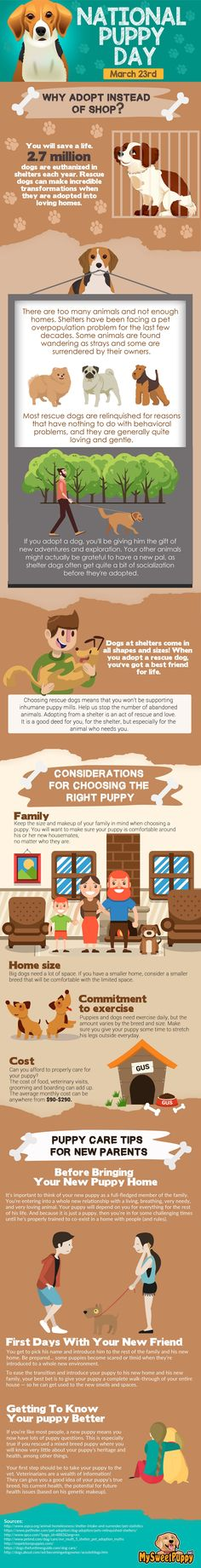 National Puppy Day Is Here, Let's Celebrate!  Come and visit us today for more great information...Opt To Adopt is always a great thing!