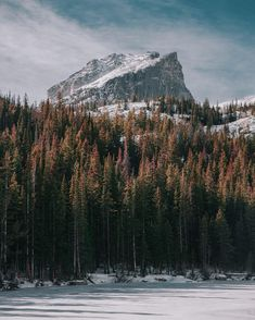 460 best rocky mountain national park images rocky mountain rh pinterest com