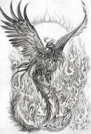 Image result for japanese phoenix drawing