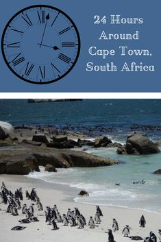 A Perfect 24 Hours Around Cape Town