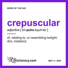 Word of the Day - crepuscular Unusual Words, Rare Words, New Words, Cool Words, English Adjectives, Vocabulary Words, Vocabulary Building, English Vocabulary, English Words