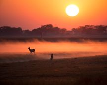 Sunrise on the Busanga Plains