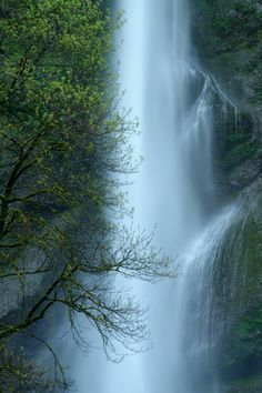 Falls & Spring Abstract  - Columbia River Gorge, Oregon