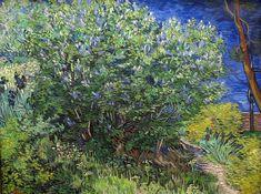 Vincent van Gogh - Lilac Bush - 1889