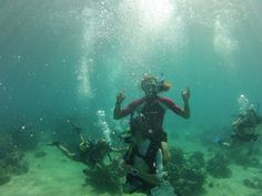 Diver, Madagascar | Dive, travel and volunteer for Marine Conservation at www.frontiergap.com | #dive