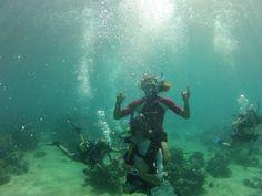 Diver, Madagascar | Dive, travel and volunteer for Marine Conservation at www.frontiergap.com | #dive