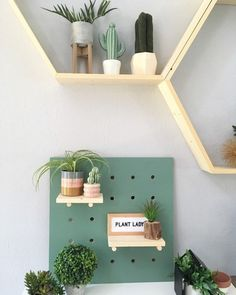 Customizable metal pegboard is set to revolutionise utensil storage. For forty years the limitations of fibreboard has narrowed our imagination … Pegboard Display, Display Shelves, Wall Storage Systems, Metal Wall Panel, Utensil Storage, Birch Ply, Idee Diy, Spring Fever, Kids Decor