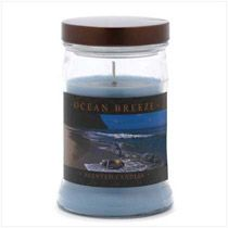 """Relive your favorite seaside memories with your very first whiff of this ocean-air candle! A calming scent that brings to mind lazy seaside days and moonlit nights on the shore. Burns up to 100 hours. Holds 15 oz. Made in USA. Langley candle. Weight 1.8 lbs. UPC# 644124531073. 3 3/4"""" diameter x 5 3/4"""" high. Highly fragranced wax in metal lidded glass container  $12.95"""
