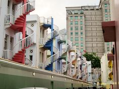Painted Ladies in Singapore