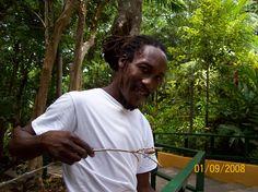 Jamaican Wildlife