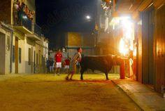 torodigital: Un buen toro de Felipe Bartolomé sofoca el calor ...