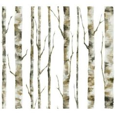 York Wallcoverings  BS5334  Wallpaper: Enchanted Forest  Home Decor; White, Grey, Tan, Brown; better choice for playroom (for longevity)