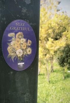Thank You Notes, Self Help, Grateful, Books, Life Coaching, Libros, Book, Book Illustrations, Libri