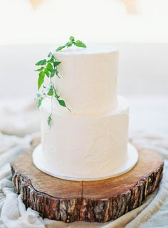 Rustic iced wedding cake: http://www.stylemepretty.com/collection/2640/