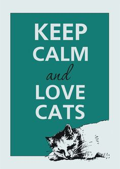 and love cats!