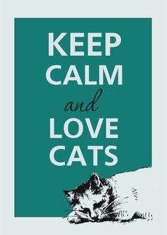 love the kitties