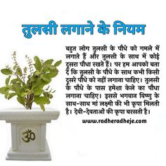 Good Morning Beautiful Flowers, Beautiful Nature Scenes, Vedic Mantras, Hindu Mantras, Tips For Happy Life, Astrology Hindi, Tulsi Plant, Hindu Vedas, Lucky Plant