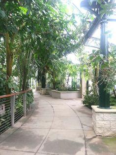 Huntington Library Gardens - San Marino, California